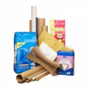 Paper & Carton Converting